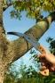 BAHCO Садовая обрезная пила 4211-11-6T 1