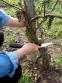 BAHCO Складная садовая пила 396-JS 2